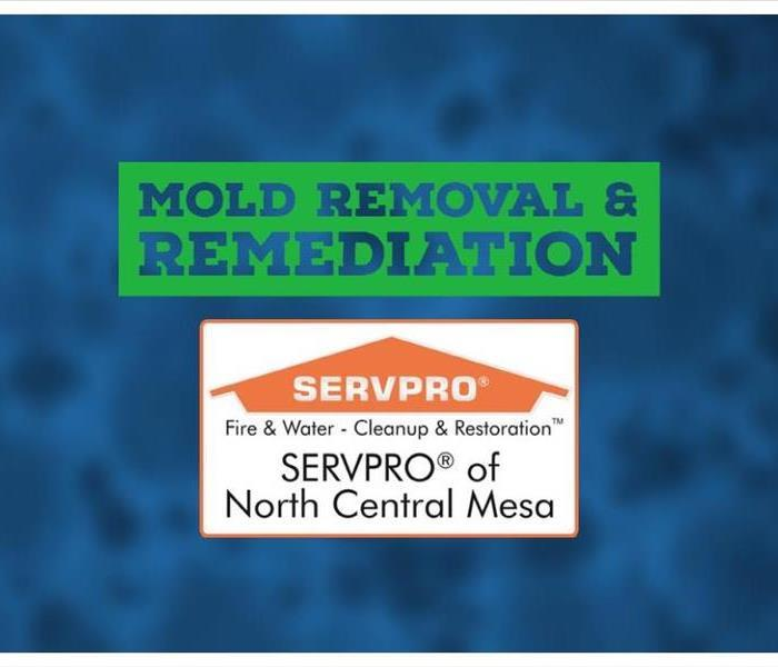 Text: Mold Removal and Remediation with SERVPRO of North Central Mesa Logo with blurred picture of a mold spore in background