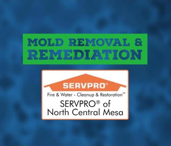 SERVPRO of North Central Mesa Logo with faded mold spore in the background