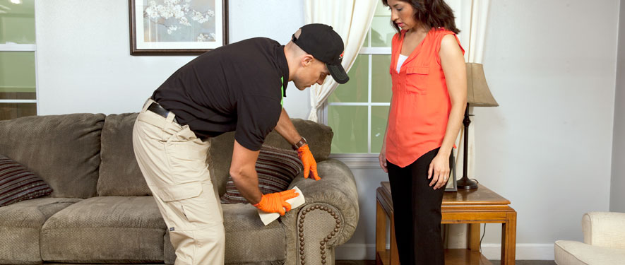 Mesa, AZ carpet upholstery cleaning